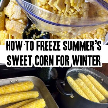 How To Freeze Summer's Sweet Corn For Winter