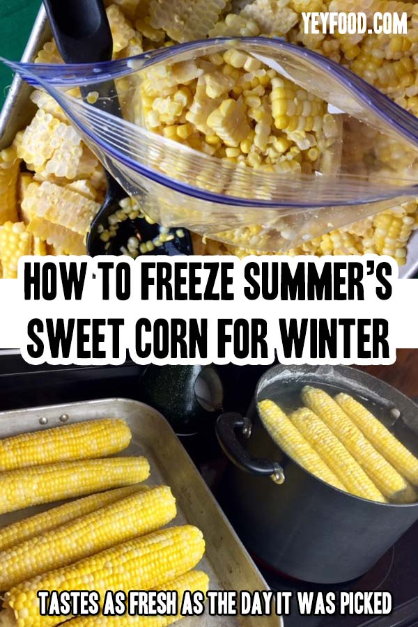 """Freezing corn for winter is a bit messy but so worthwhile! Way better than """"store-bought."""" Serve it on Thanksgiving and watch everyone """"gobble"""" it up!"""