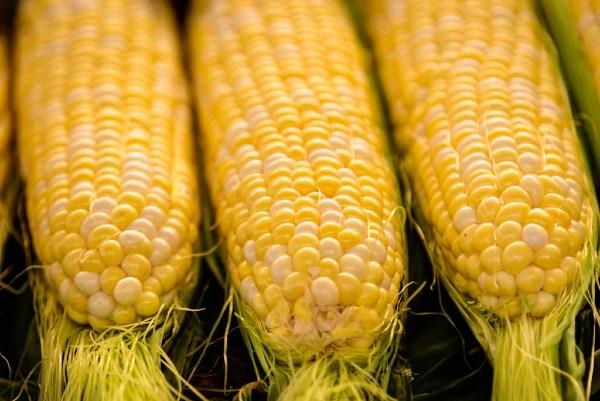3 ears of sweet corn