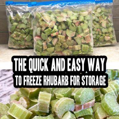 How To Freeze Rhubarb For Storage
